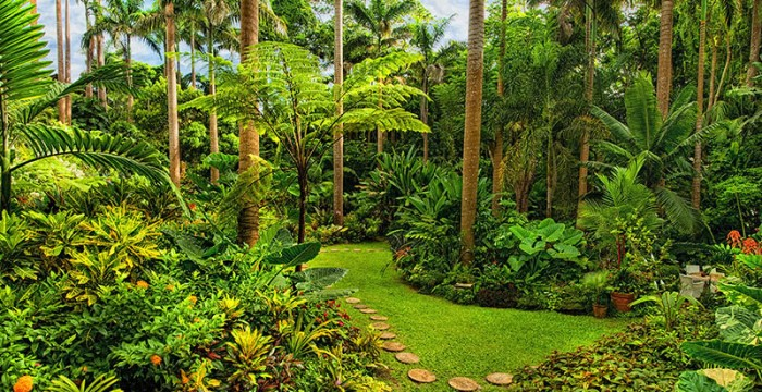 Huntes Garden, Barbados