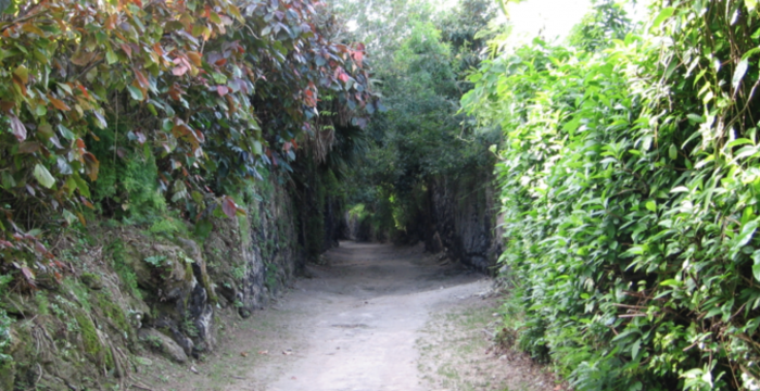 Railway_Trail_Bermuda