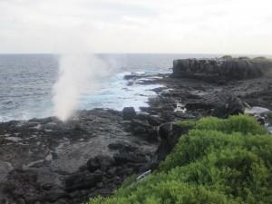 Ecuador, Galapagos