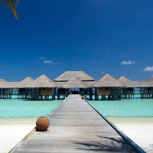 gili lankafushi, maldives, indian ocean