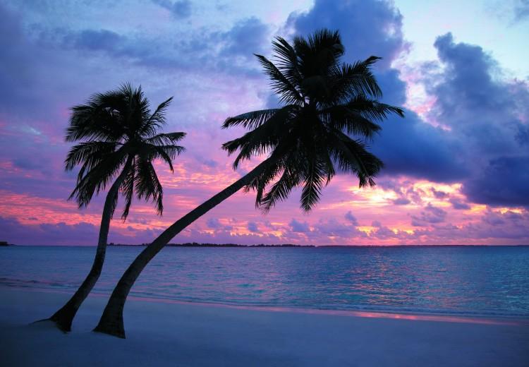 /Volumes/Final-3/CURRENT JOB 1/SHL Maldives/original/Process/._MG_2858.tif