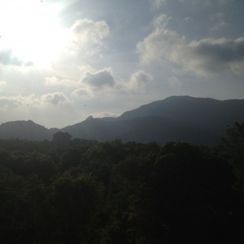 Views from Heritance Kandalama Hotel Dambulla (2)