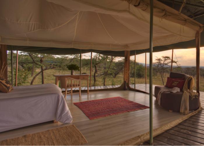 Kicheche valley camp, kenya, africa