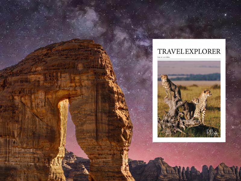2020_ A Travel Odyssey