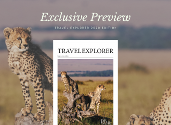 Travel_Explorer_Preview_for_blog