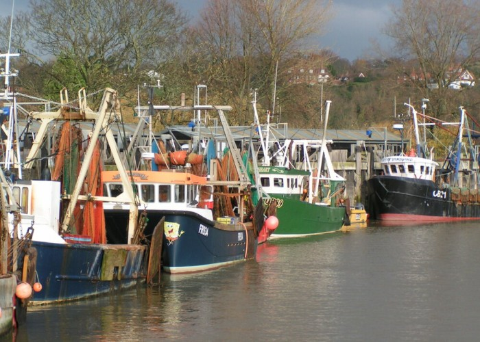 BOATS+IN+HARBOUR